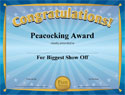 Sample Funny Award Certificates: 101 in All PLUS 6 Award Templates!